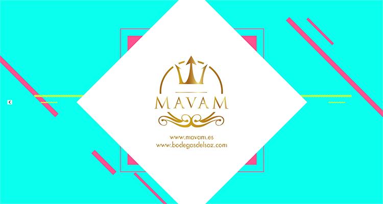 MAVAM プロモーション動画